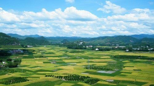 梧州封开肇庆2日跟团游封开小桂林巨龙游船人成就魂攻略星湖之25图片