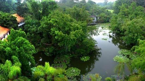 西双版纳热带植物园景区