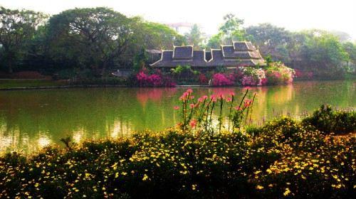 乐园游·云南西双版纳+普洱+野象谷+原始森林公园4日