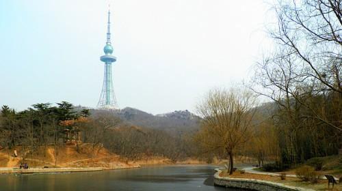 青岛电视塔观光门票-【携程旅游】