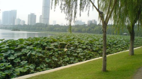 南京2-10日自由行·双飞 酒店任选 专车接机