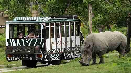 亲子游·巴厘岛野生动物园 waterbom水上乐园5日豪华半自助游(新航)