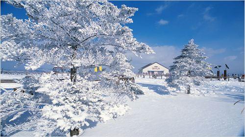 韩国济州岛4日3晚跟团游·温泉游+市区五花+爬汉拿山