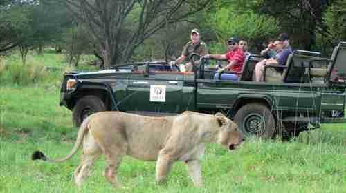 【携程旅行】-南非约翰内斯堡+比勒陀利亚+太阳城+8