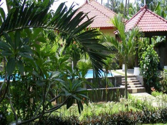 Lovina Villa Cinta Bali Price Address Reviews