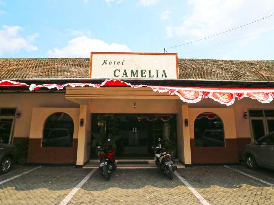 Camelia Hotel Kota Malang Price Address Reviews