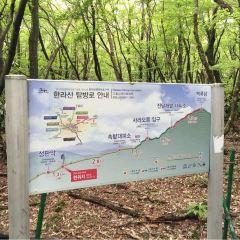 한라산 국립공원 여행 사진
