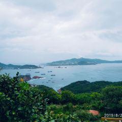 枸杞島用戶圖片