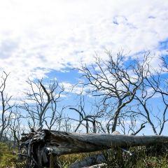 大奧特威國家公園用戶圖片