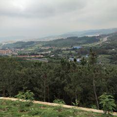 Chishan Scenic Area User Photo