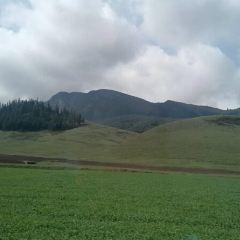 富錦國家濕地用戶圖片