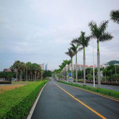 Huandao Road User Photo