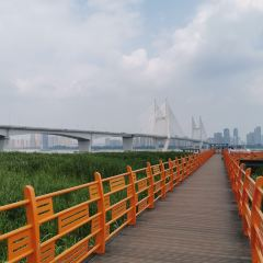 Hankou Riverbank User Photo