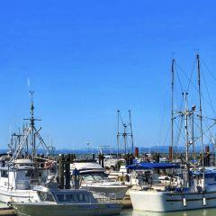 維多利亞漁人碼頭用戶圖片