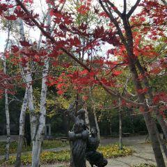Shenyang Expo Park User Photo