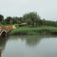 張掖國家濕地公園用戶圖片