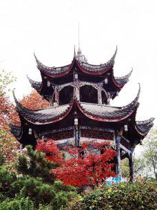西山子云亭风景区-绵阳-woolynn50