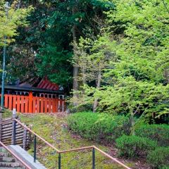 Fushimi Inari Taisha User Photo