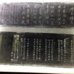 Wenyu Tai (Wenyu Platform) User Photo