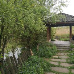 관산호공원 여행 사진