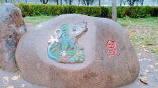 天中山文化生态园-汝南-开着飞去遛狗