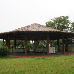 Anji Bamboo Expo Park User Photo