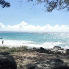 塔加海灘用戶圖片