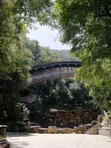 五泉山公园-兰州-独行舟