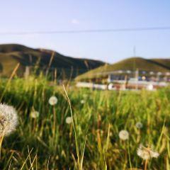 春坤山用戶圖片