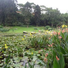 東湖磨山景區用戶圖片