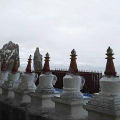 紮西島寺用戶圖片