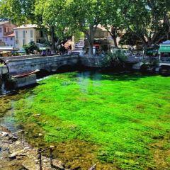 泉水鎮用戶圖片