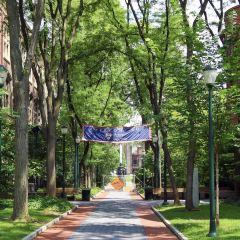 賓夕法尼亞州立大學用戶圖片