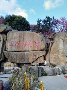 永福樱花园-漳平-m23****3420