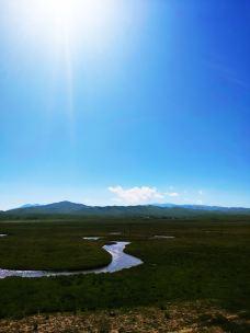 甘加草原-夏河-东夷西羌的行游生活
