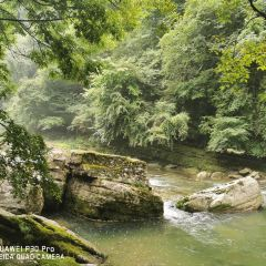 Liping Forest Park User Photo