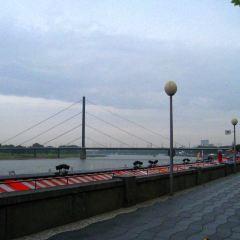 Rhine Promenade User Photo