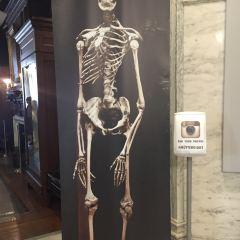 Mutter Museum User Photo