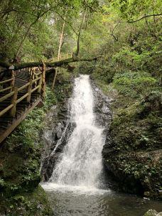 天柱峰国家森林公园-铜鼓-雷克瑟姆郡米莉