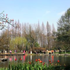 왕자만 공원 여행 사진