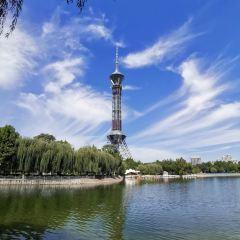 世紀公園用戶圖片
