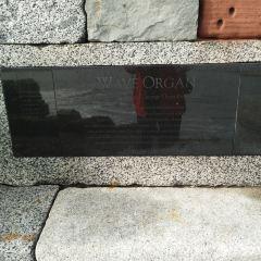 Wave Organ User Photo