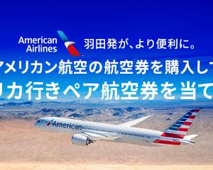 Trip.com特別運賃!アメリカン航空の航空券を購入してアメリカに2度行こう!