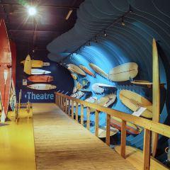 衝浪世界博物館用戶圖片