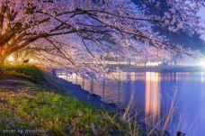 大洪山琵琶湖风景区-随州
