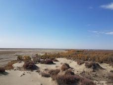 塔克拉玛干沙漠(巴音郭楞)-巴音郭楞