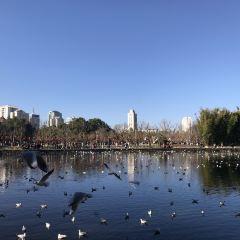 추이후 공원(취호 공원) 여행 사진