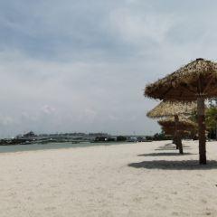 大東海旅遊區-沙灘躺椅區用戶圖片