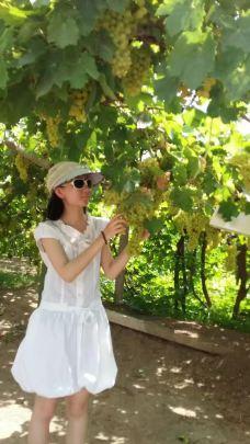 葡萄沟-吐鲁番-Cassie小含