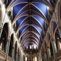 Notre Dame Basilica User Photo